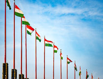 Flags on Budapest castle hill. Stock Images