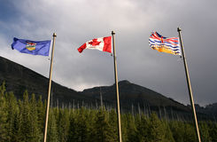 Flags - Canada provinces royalty free stock photos