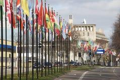 flags den hague internationalen Arkivbild