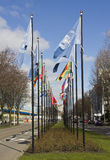 flags den hague internationalen Royaltyfria Bilder