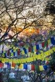 flags den tibetana bönen Royaltyfria Bilder