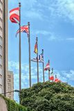 Flags of different countries near the embassy of a state institution. Stock Photo