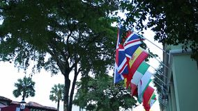 Flags from different countries hanging in street under trees stock video