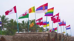 Flags of different countries on a windy day at the beach. stock video footage