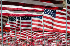 Flags. Displayed commemorating 911, one for each person killed Royalty Free Stock Image