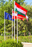 Flags of EU countries Stock Images