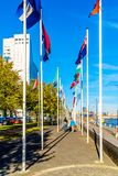 Flags from European Countries in Rotterdam in the Netherlands. Flags from European Countries along the sidewalk at the Boompjeskade and the De Boeg memorial in royalty free stock photos