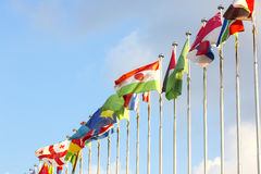 Flags on flagpoles Royalty Free Stock Photos