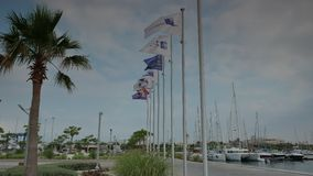 Flags flattering in the marina 4k stock video