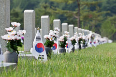Flags and flowers at Seoul National Cemetery. Flags and artificial flowers at Seoul National Cemetery  on Independence Day with selected focus Royalty Free Stock Photos