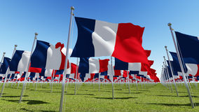 Flags of France in green field against blue sky. Three dimensional rendering illustration 3D Royalty Free Stock Photos