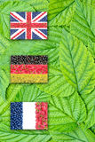 Flags of Germany,France and England on the leaves Royalty Free Stock Photo