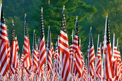 Flags in the Healing Fields for 9/11 Royalty Free Stock Photography
