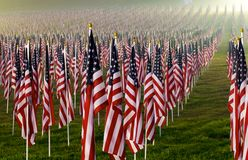 Flags in the Healing Fields for 9/11 Royalty Free Stock Photo