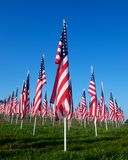 Flags in the Healing Fields for 9/11 Stock Photos