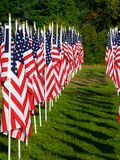 Flags in the Healing Fields for 9/11 Royalty Free Stock Image