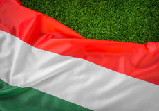 Flags of  Hungary on green grass . Royalty Free Stock Photography