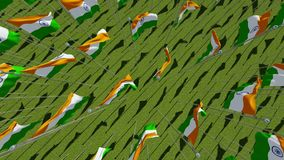 Flags of India in green field. 3D stock footage