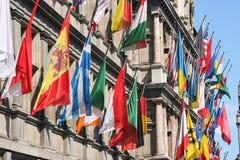 flags internationalen Royaltyfria Foton