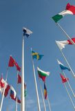 flags internationalen Royaltyfri Foto