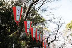 Flags with Japanese Text Royalty Free Stock Image