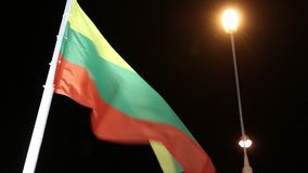 Flags of Lithuania with illumination on wind at night stock video footage