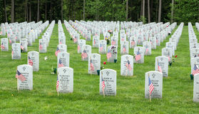 Flags at a National Cemetery Royalty Free Stock Photography