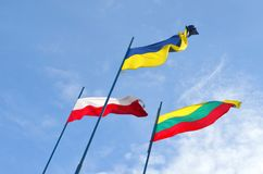 Free Flags Of Lithuania, Ukraine And Poland Royalty Free Stock Photography - 132519187