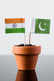 Flags of pakistan and india. In a plant pot royalty free stock photo