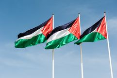 Flags of Palestine. Three flags of Palestine waving in the sky Stock Photography