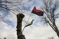 Flags Right Sector and Ukraine. Against the sky Stock Photos