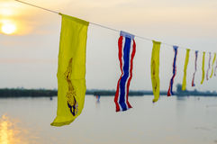 Flags on rope Stock Image