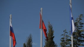 Flags of Russia and Crimea. Andreevsky flag stock video