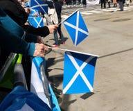 flags scottish стоковые фотографии rf
