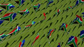 Flags of South Africa in green field. stock video