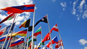 Flags of states on flagpoles stock video