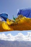 flags tibetant Royaltyfria Bilder
