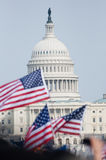 Flags and U.S. Capitol Royalty Free Stock Image