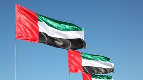 Flags of the United Arab Emirates. National Flags of the United Arab Emirates waving in the wind stock footage