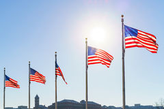Flags of the United States Royalty Free Stock Photography