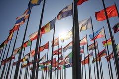 flags världen royaltyfri bild