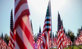 Flags of Valor. Forest Park Royalty Free Stock Photo