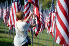 Flags of Valor outside Saint Louis Art Museum Stock Image