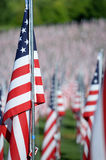 Flags of Valor outside Saint Louis Art Museum Stock Photography