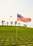 Flags waving at the cemetary. US Flags waving at a military cemetary in honor of those fallen in the line of duty, serving their country stock image