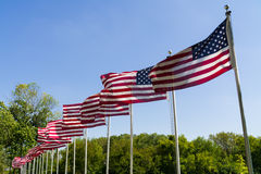 Flags waving in the wind. Royalty Free Stock Photo