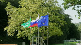Flags waving while wind is blowing infront of the trees stock video footage