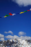 Flags in the wind Royalty Free Stock Photos