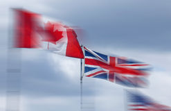 Flags in the Wind at Sidney, British Columbia Royalty Free Stock Images