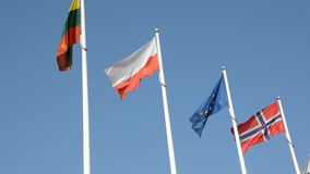 Flags in the wind and sky background. Various flags in the wind and sky background stock footage